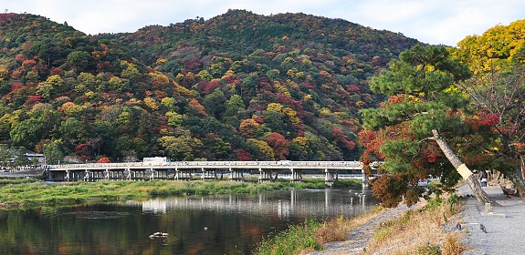 Stroll at Togetsukyo Bridge, Arashiyama, Japan