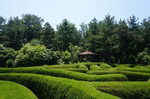 Gimnyeong Maze Park Jeju