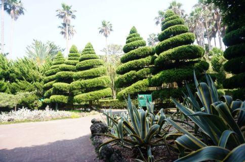 Hallim Park Jeju