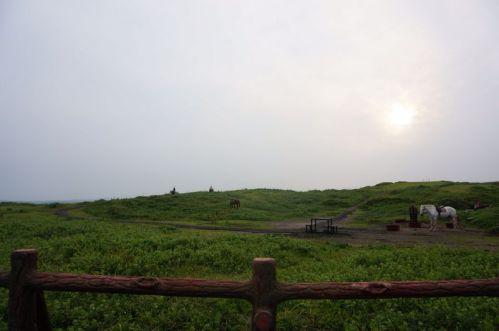Seopjikoji Jeju