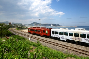 The Donghae Sea Train in Gangwon Korea